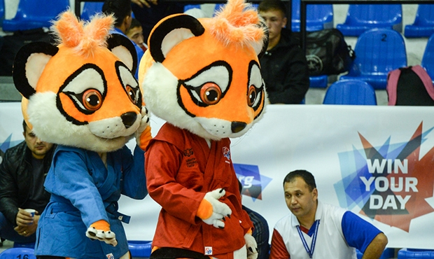 [VIDEO] Tigers fighting at the World Youth and Juniors Sambo Championships 2016 in Romania