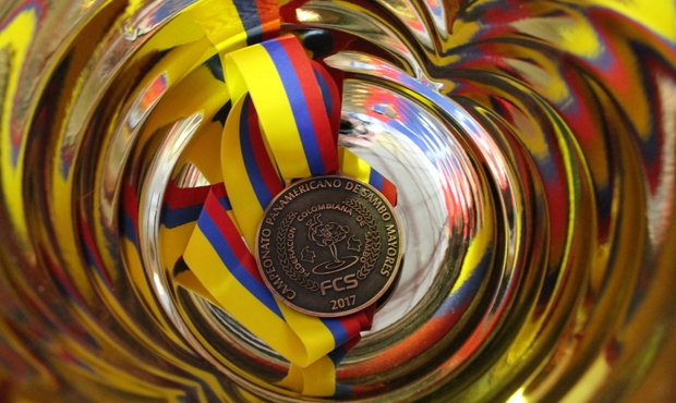 What winners of the 2nd day of the Pan-American Championships in Colombia were talking about