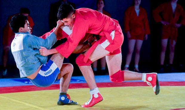 What winners of the President`s SAMBO Cup in London were talking about