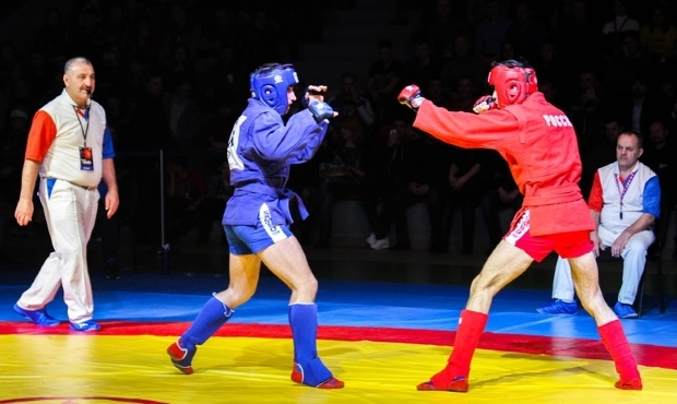 Russian combat sambo wrestlers revealed the winners