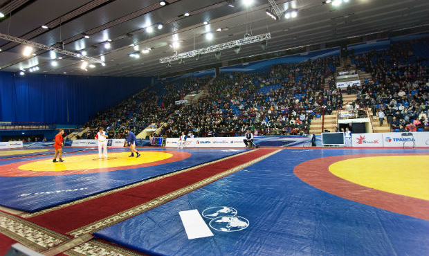 Vladimir Yaprintsev. Sambo Tournament on the Prizes of the President of Republic of Belarus 2014 [VIDEO]
