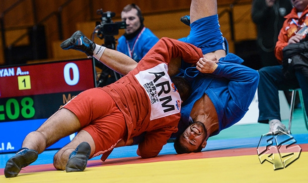 Moments of Sambo in 2014 [VIDEO]