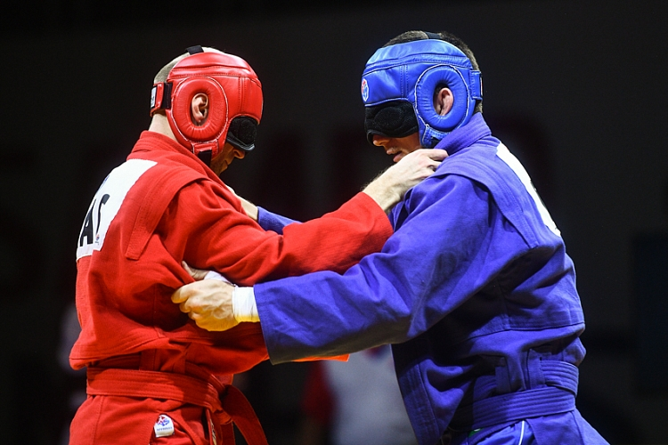 Japanese SAMBO Perspectives for the Blind and Visually Impaired